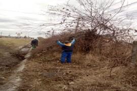 Se face curățenie în cartierele din Mioveni. Iată programul!