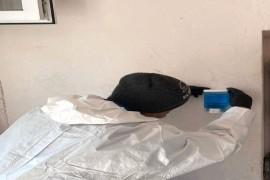 Soluții de dezinfecție pentru fiecare scară de bloc din Mioveni